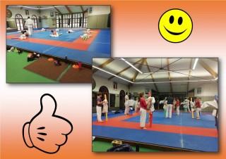 Image de l'actu 'Au judo, on s'adapte'