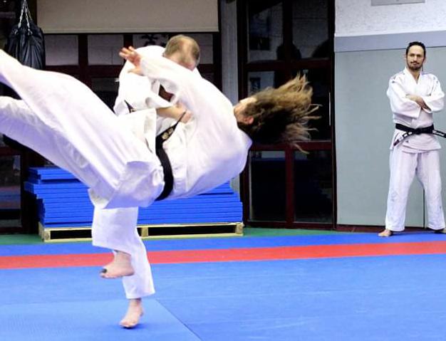 les judokas en action